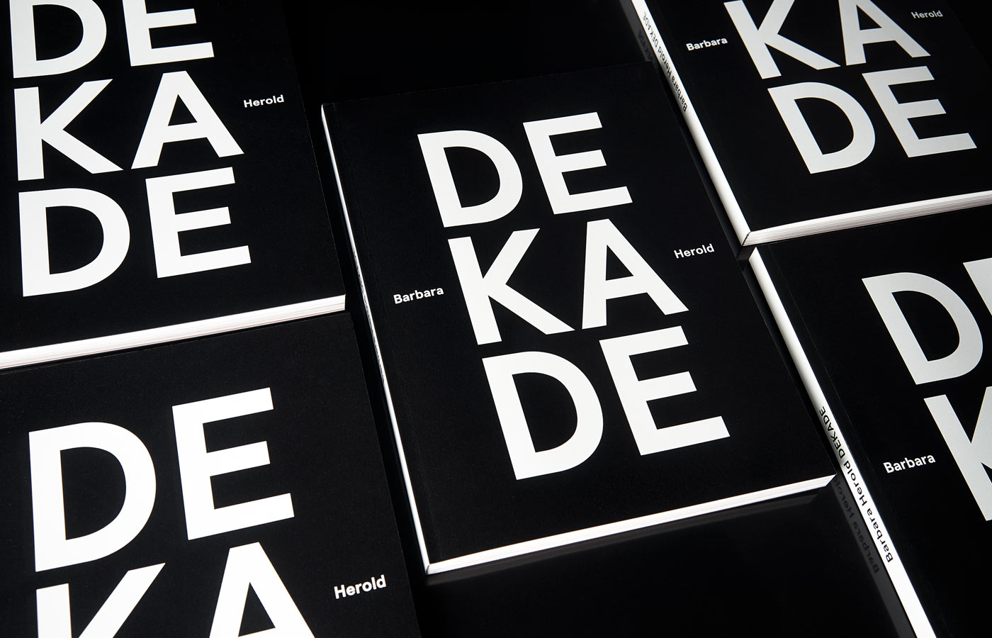 Barbara HeroldEine Dekade Kunst – ein Katalog