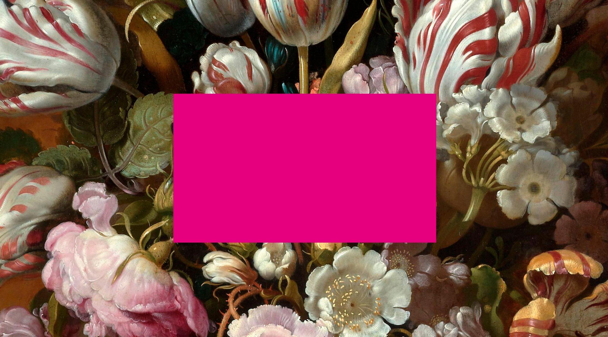ikono.TV Branding visuelles Leitmotiv Rechteck auf Blumen – Uthmöller und Partner